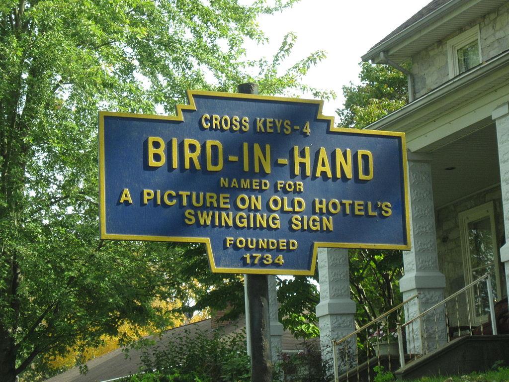 01-birdinhand